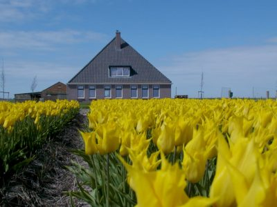 Deza kunststof kozijnen Heerhugowaard - renovatie boerderij 't Zand